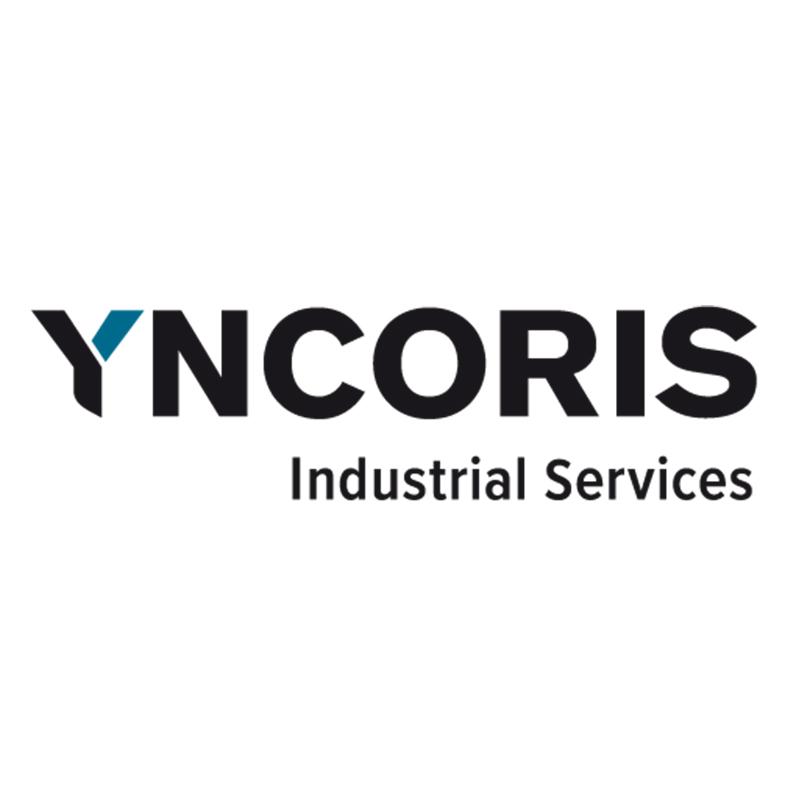 Logo yncoris